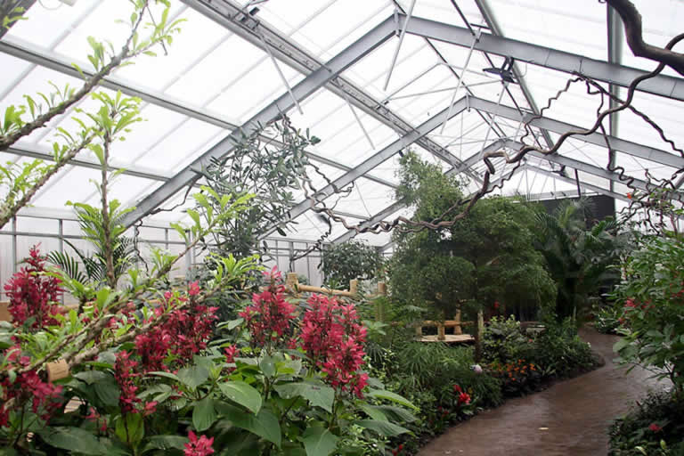 Chester Zoo Butterfly House Greenhouse Project Bridge